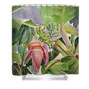 Lady Fingers - Banana Tree Shower Curtain