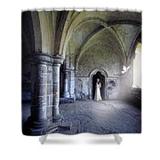 Lady In Abbey Room With Doves Shower Curtain