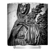 Lady On The Wall Shower Curtain