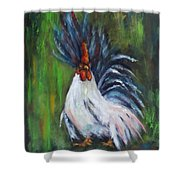 Lady Pleaser, Rooster  Shower Curtain