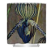 Lady Slipper Secret Garden Shower Curtain