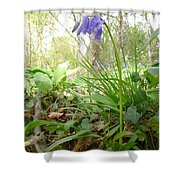 Lady Spencer's Bluebell Shower Curtain