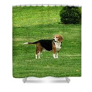 Lady7 Shower Curtain
