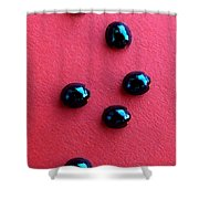 Ladybirds In Formation Shower Curtain