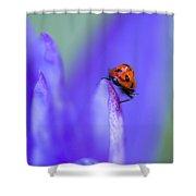 Ladybug Adventure Shower Curtain