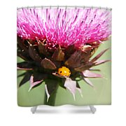 Ladybug And Thistle Shower Curtain by Marilyn Hunt