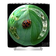 Ladybug Eating Aphids Shower Curtain