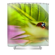 Ladybug IIi Shower Curtain
