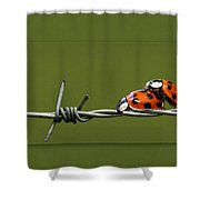 Ladybug In Love Shower Curtain