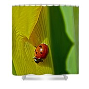Ladybug Macro Shower Curtain
