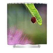 Ladybug With Mimosa Shower Curtain