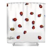 Ladybugs Shower Curtain