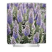 Laguna Beach Flora Shower Curtain