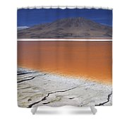Laguna Colorada, Altiplano Bolivia Shower Curtain