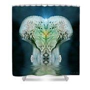 Lair Shower Curtain