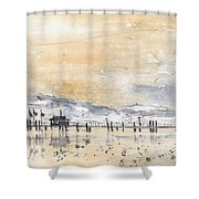 Lake Constance In Winter Shower Curtain