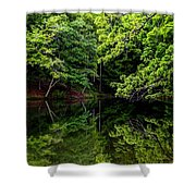 Lake Issaqueena Shower Curtain