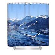 Lake Lucerne Seagulls Shower Curtain