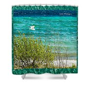 Lake Michigan Seagull In Flight Shower Curtain