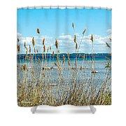 Lake Michigan Shore Grasses Shower Curtain