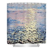 Lake Michigan Sunrise Shower Curtain