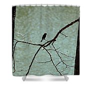 Lake Song Shower Curtain