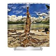 Lake Tenaya Giant Stump Shower Curtain