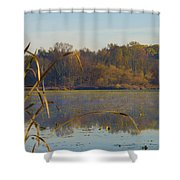 Lake Towhee In Autumn Shower Curtain