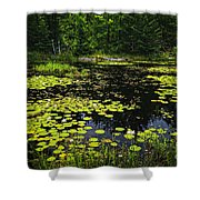 Lake With Lily Pads Shower Curtain