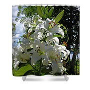 Lakeside Lilies Shower Curtain