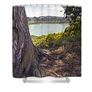 Lakeside Tree Shower Curtain