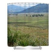 Lamar Valley Yellowstone National Park Shower Curtain
