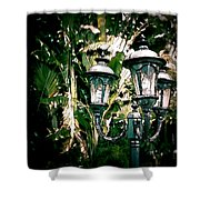 Lamp Post Shower Curtain