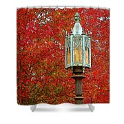 Lamp Post In Fall Shower Curtain