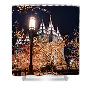 Lamp Post Slc Temple Shower Curtain