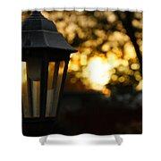 Lamplight Shower Curtain