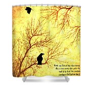 Land Of The Dead Shower Curtain