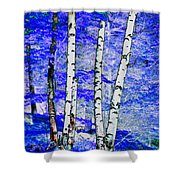 Land Of The Silver Birch Shower Curtain