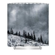 Land Shapes 1 Shower Curtain by Priska Wettstein
