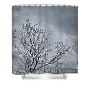 Land Shapes 16 Shower Curtain by Priska Wettstein
