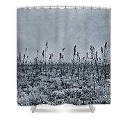 Land Shapes 20 Shower Curtain