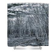 Land Shapes 22 Shower Curtain by Priska Wettstein