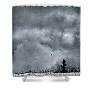 Land Shapes 5 Shower Curtain