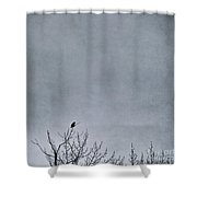 Land Shapes 8 Shower Curtain