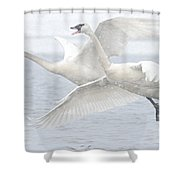 Landing In The Snow Shower Curtain