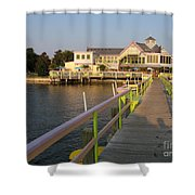 Landing In The Sun Shower Curtain