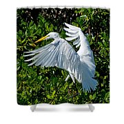 Landing Shower Curtain