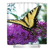 Landing Zone Shower Curtain