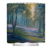 Lands End 03     Shower Curtain