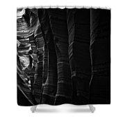 Landscape 118 Shower Curtain
